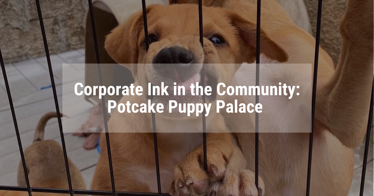 Potcake Puppy Palace - Corporate Ink and the Community blog